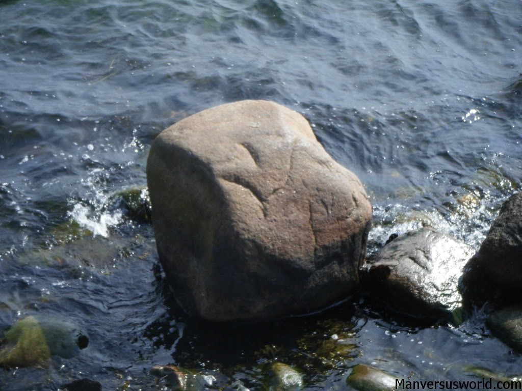 The rock the little mermaid normally sits on.