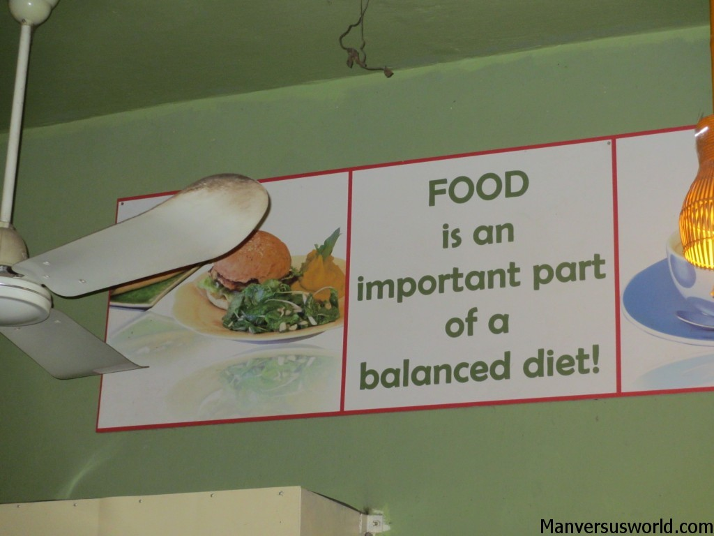 Food is the most important part of a balanced diet