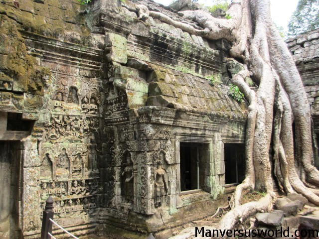 Nature tries to reclaim Ta Phrom in Cambodia