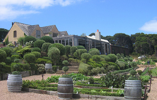The best vineyards on Waiheke Island