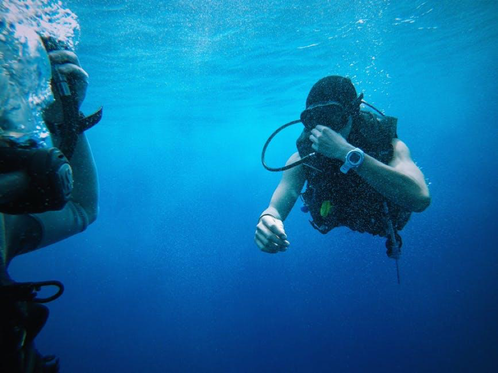 Under The Sea: Gear Every Scuba Diver Needs!