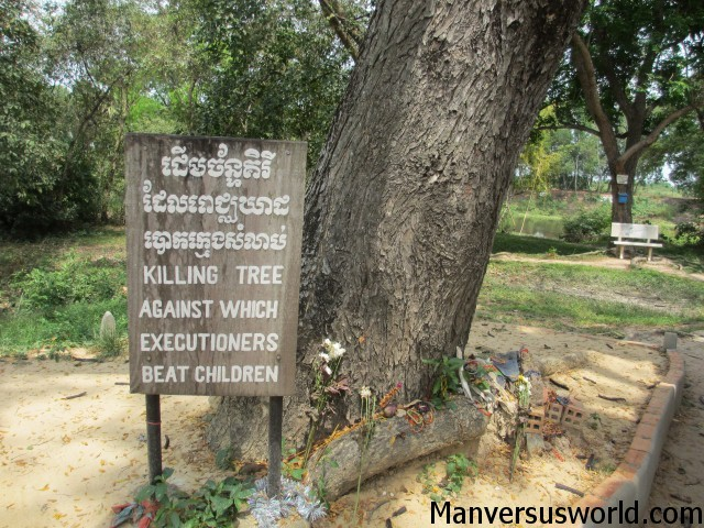 The killing tree at Choeung Ek, Cambodia