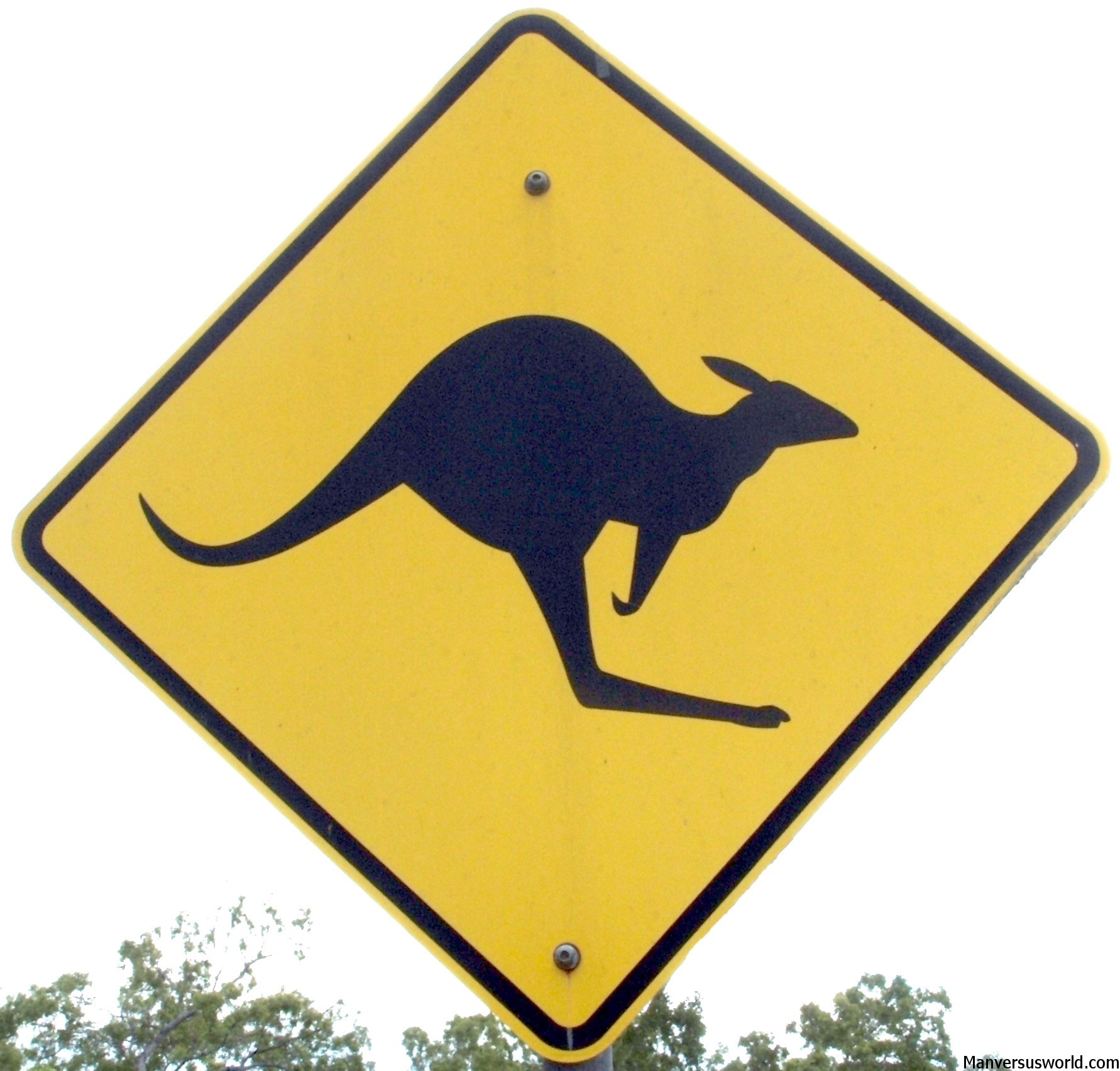 A Kangaroo warning sign in Australia